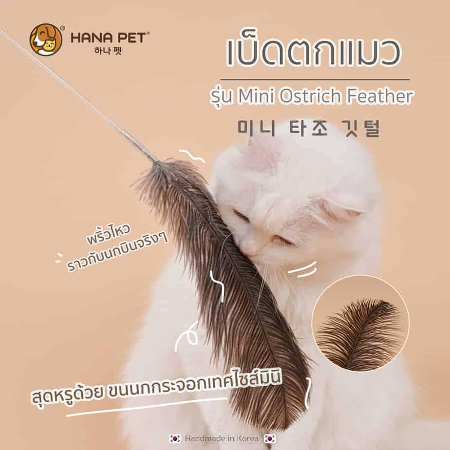 Hana Pet Mini Ostrich Cat toys