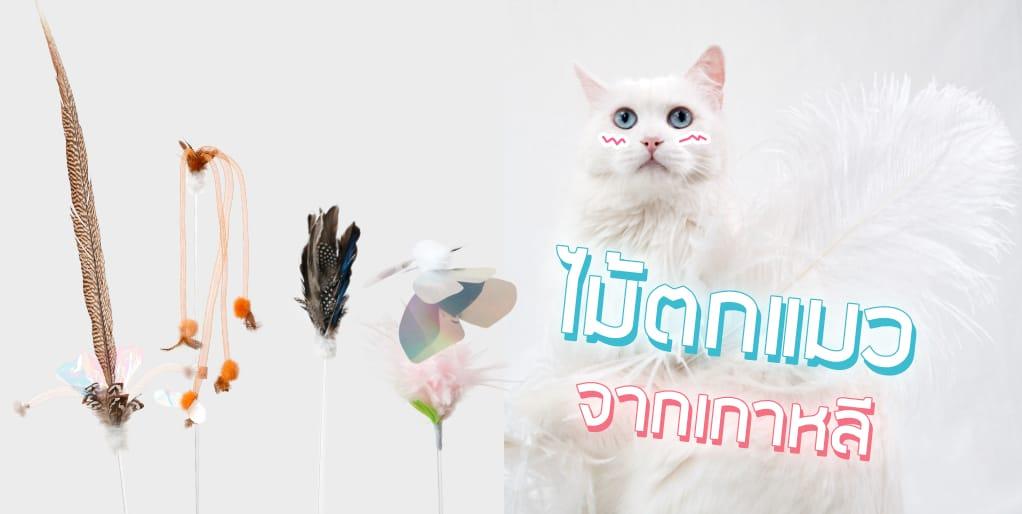 SPE Banner Cat toys